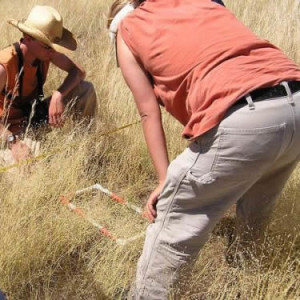 Bilogical Inventory for Plants and Wildlife in Klamath Falls